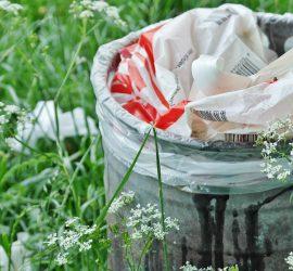 Bersih Lingkungan