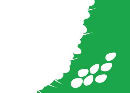 Wilayah Kelola Rakyat