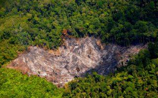 Menyikapi Dampak Usaha Perkebunan Sawit yang Merusak Hutan, Merampas Tanah, Melanggar HAM, Korupsi dan Bencana Lingkungan, Masyarakat Sipil mengirimkan surat terbuka kepada Presiden RI, Dewan Uni Eropa, Komisi Eropa dan Pemimpin Negara Eropa