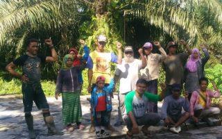 Penghapusan Pungutan Sawit Bukan Untuk Kesejahteraan Petani