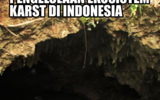 Kertas Posisi Perlindungan dan penglolaan ekosistem Karst di Indonesia